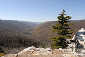 Dolly Sods View