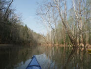 The lake from a kayak
