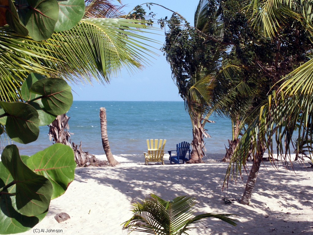 Our view in Placencia