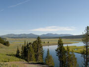 Yellowstone River from Grizzly Overlook